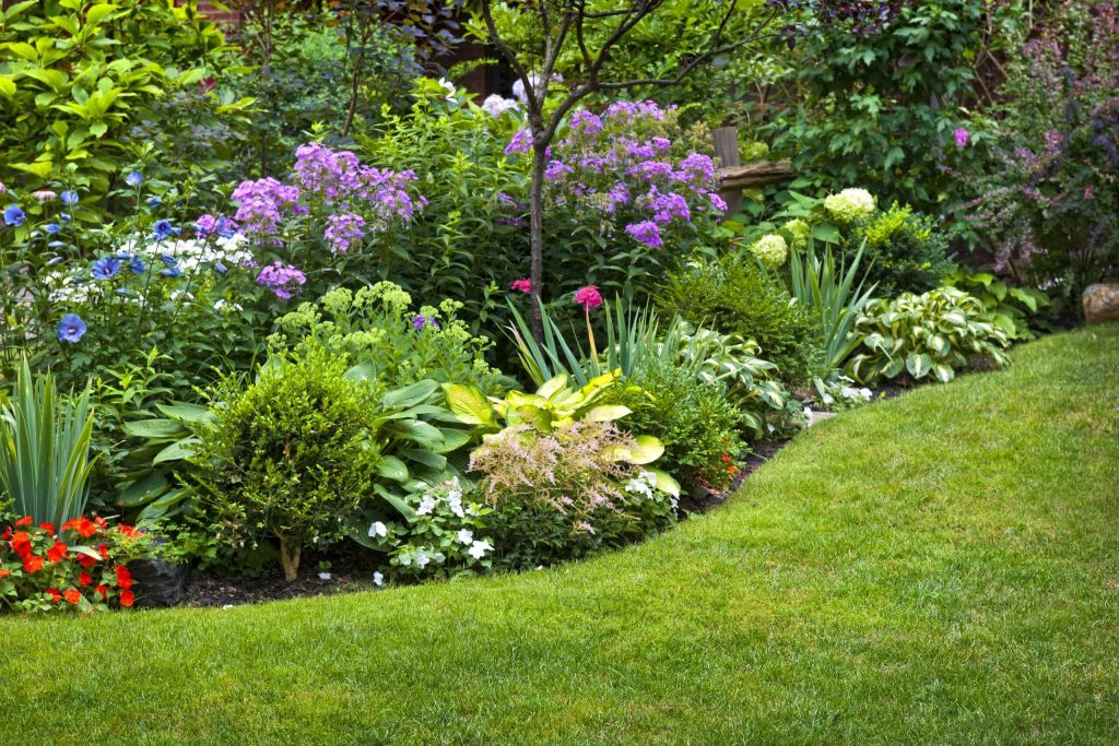 lawn-and-flower-border2560.jpg