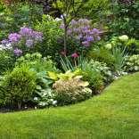 lawn-and-flower-border2560.jpg